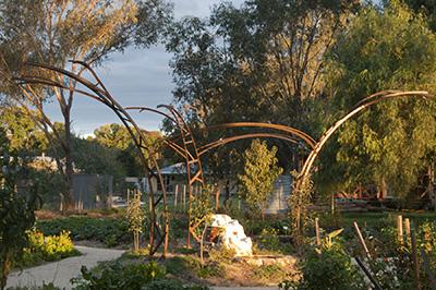 newstead Community Garden The Heart Garden